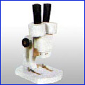 Stereoscopic Microscopes
